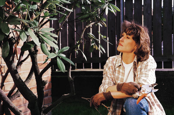 Thinking while gardening
