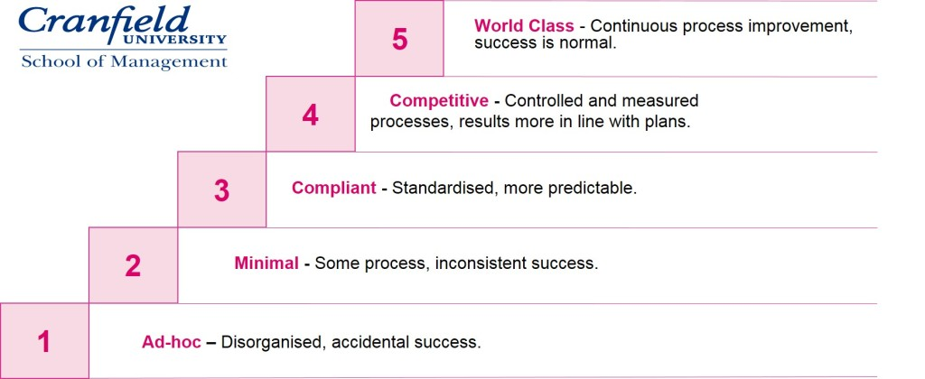 Cranfield project maturity_copyright Indigo Training